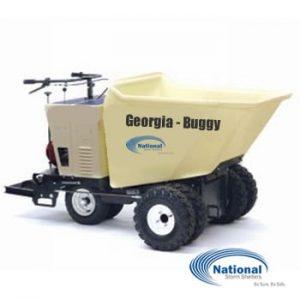 georgia-buggy-2